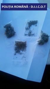 droguri (2)